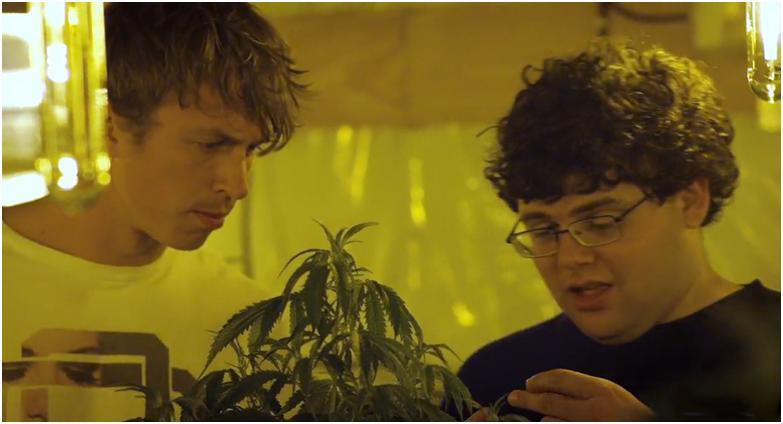 Малыш-каннабис, Kid Cannabis, 2014